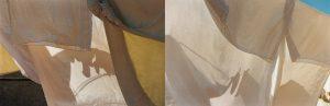 Composición fotográfica de sabanas