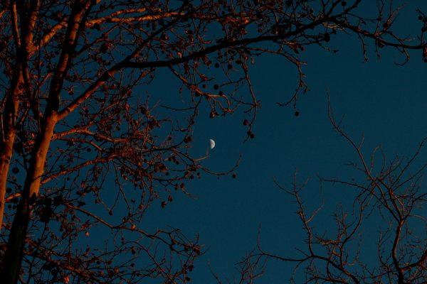 Fotografía de la media luna en Pozuelo